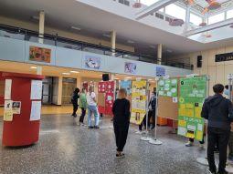 Demokratie leben an der Leni-Valk-Realschule! Juniorwahl zur Bundestagswahl 2021